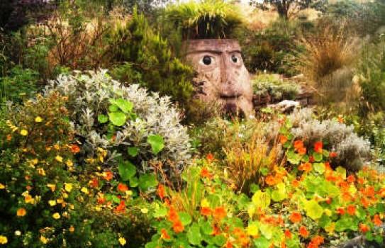 Bwlch y Geuffordd Garden, Aberystwyth