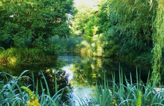 Westonbuy Mll Gardens