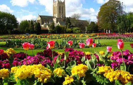 Abbey Gardens in Bury St Edmunds