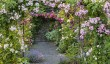 aberglasney-rose-arbour.jpg