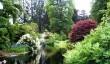 benmore_botanic_garden.jpg