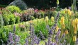 best-gardens-cornwall.jpg