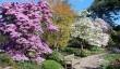 botanical-garden-birmingham.jpg