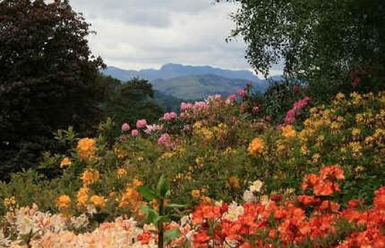 Beautiful Gardens Lake District