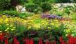 cambo-gardens-fife.jpg