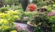 car_hir_gardens.jpg