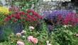 chartwell-house-garden.jpg