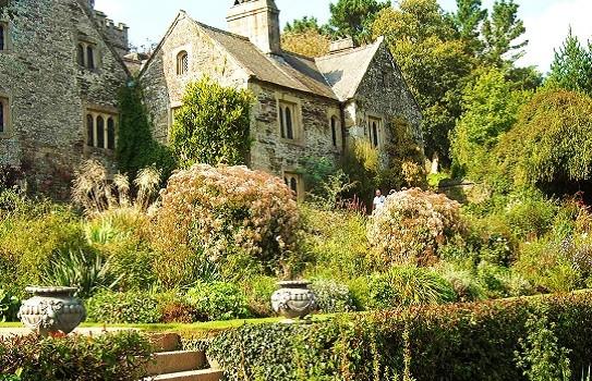 Cotehele Gardens Cornwall