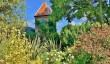 denmans-gardens-sussex.jpg