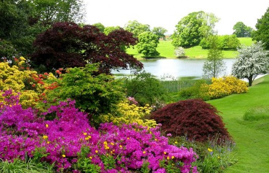 Dudmaston House Gardens