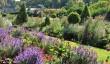 dyrham-gardens.jpg