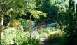 gardens-isle-of-bute.jpg