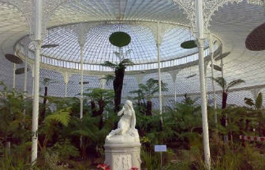 The glasshouse at Glasgow Botanic Garden