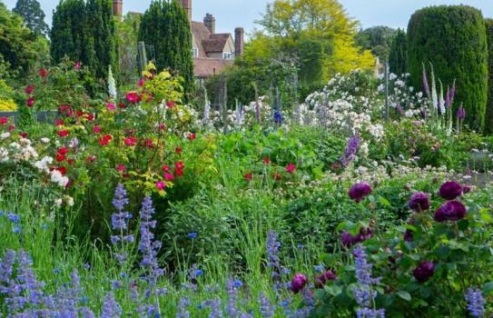 Great British Gardens - Goodnestone Park