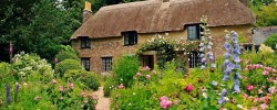 Thomas Hardy's Cottage Garden