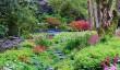 lanhydrock-garden.jpg