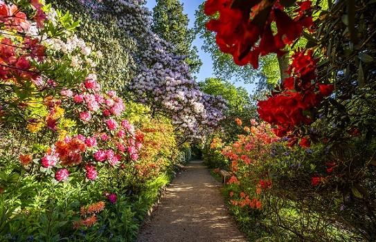 Leonardslee Gardens Sussex