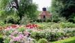 loseley-park-gardens.jpg