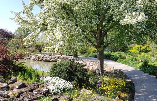 Merriments Garden