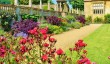 montacute_house_gardens.jpg