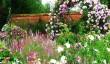 mottisfont_ros_garden.jpg