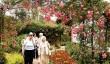 peckover-house-garden.jpg
