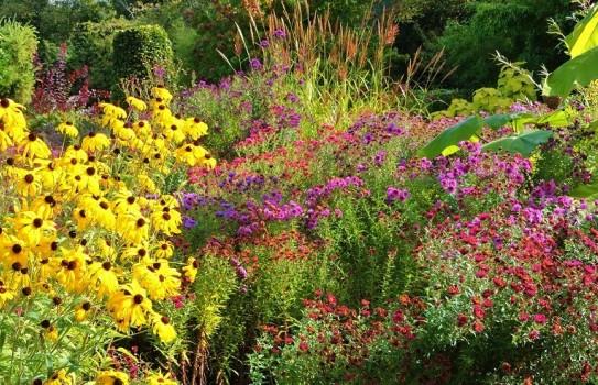Picton Garden