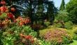 ramster-garden.jpg