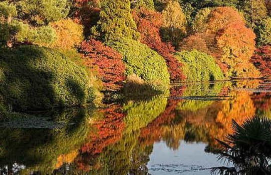 Sheffield Park Garden in Autumn