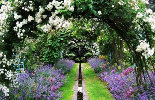 The beautiful Shepherd House Gardens