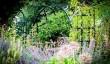 shropshire-gardens.jpg