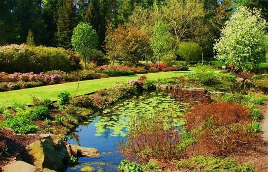 St Andrew's Botanic Garden