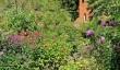 stone-house-cottage-garden2.jpg