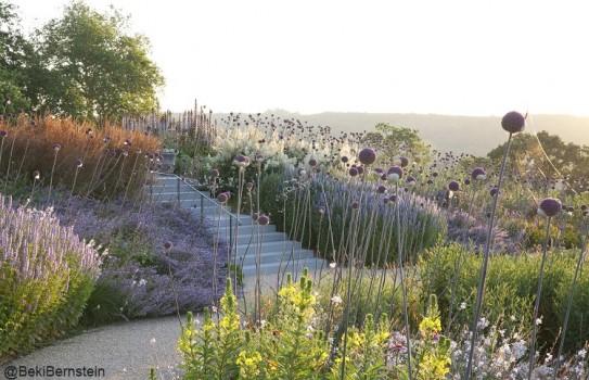 American Museum Gardens