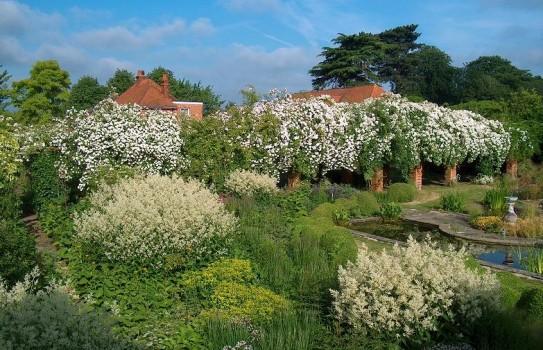 Waltham Place Garden
