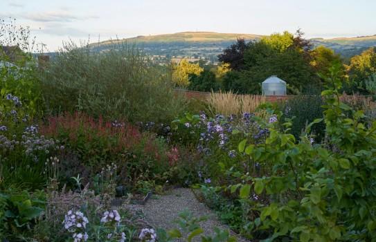 Wildegoose Garden