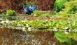 wiltshire-gardens.jpg