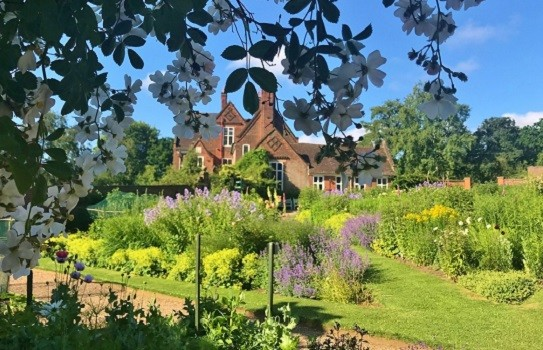 Winterbourne House Gardens
