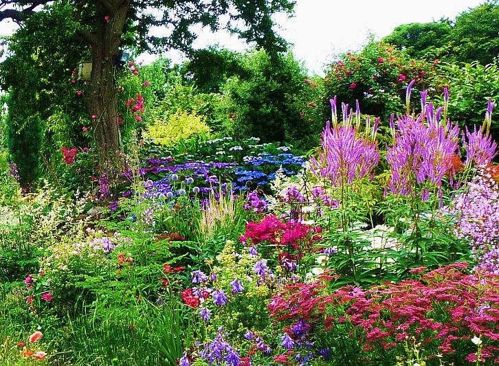 gardens in cornwall