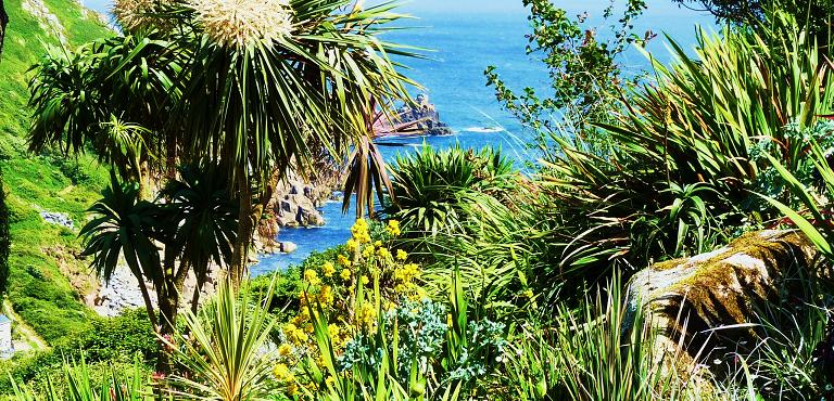 Coastal gardens great british gardens