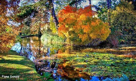 Cambridge Botanical Gardens >> Cambridge Botanic gardens and plaes to stay - Great ...