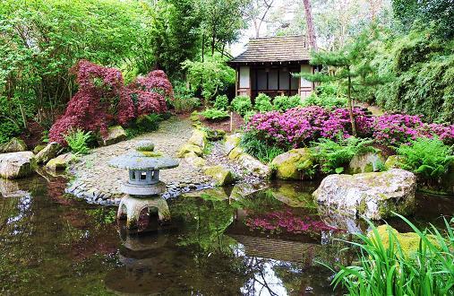 Pinetum park and gardens great british gardens for Plants found in japanese gardens
