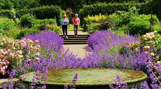 Wisley Gardens RHS & hotels & places to stay - Great ...
