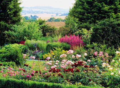 Essex Gardens To Visit Near Colchester Chelmsford