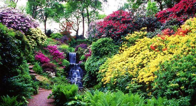 Gardens In Shropshire To Visit Near Shrewsbury Ludlow